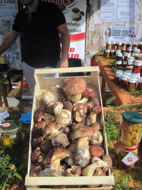 Mushrooms for Sale, Mammola