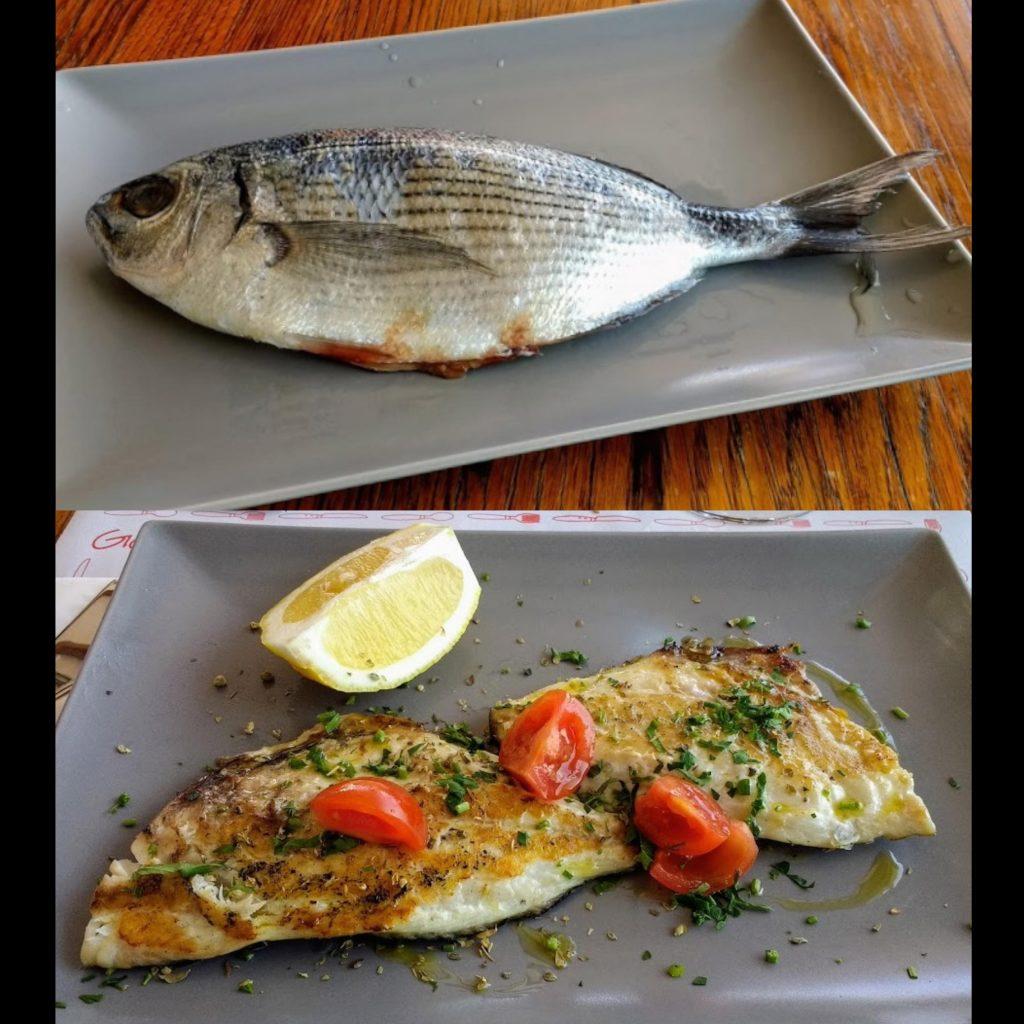 Visit Stromboli, Sicily