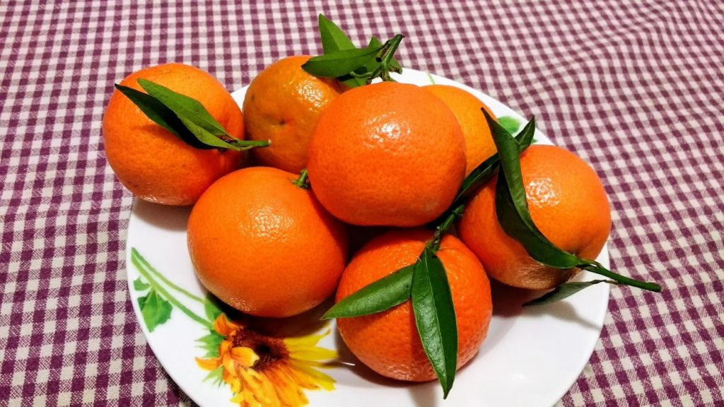 Calabrian citrus, Calabria at Christmas